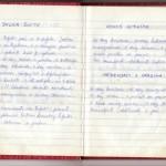 Julka šnite, Kokos kiflice i Medenjaci