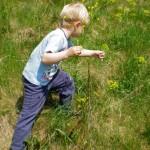 Proljeće – sezona alergija