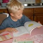 Razmjena školskih udžbenika za školsku godinu 2010/2011. u Međimurju