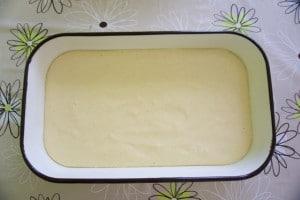 Pripremljeni biskvit izliti u namašćen lim za pečenje